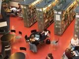 Bibliotekoje
