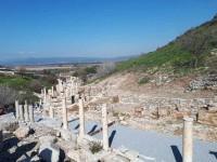 Efesas